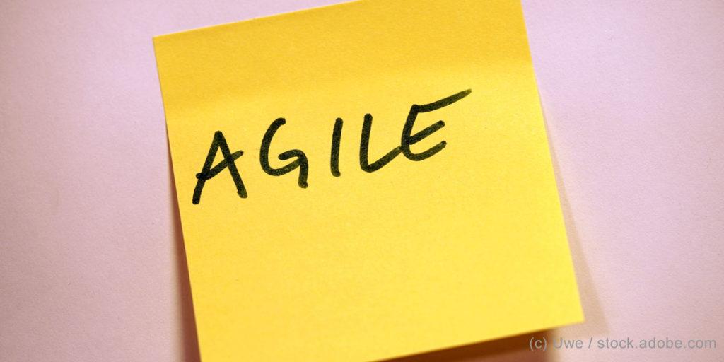 Agilität: Warum sind so wenige Unternehmen agil?