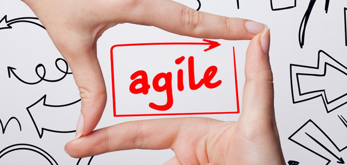 agil Handeln - Komplexithoden & Organisationsentwicklung 4.0